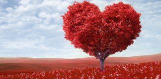 san-valentin-1600x700_1
