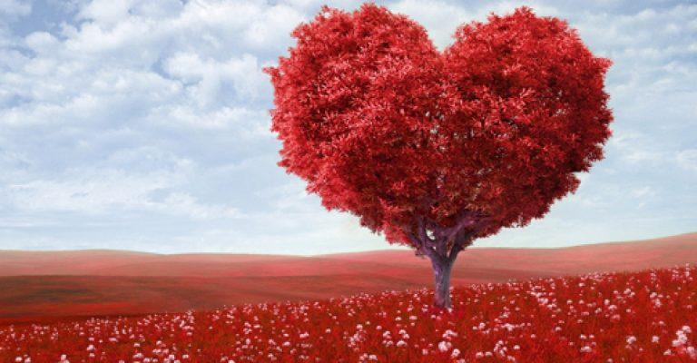 Disfruta de nuestra playlist para celebrar el día de San Valentín