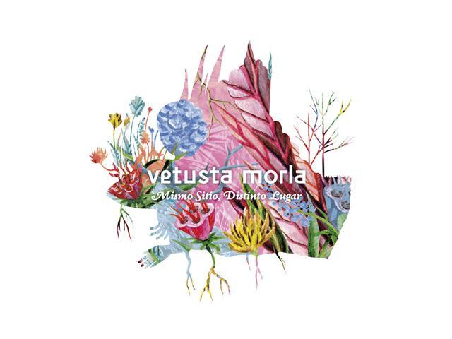 """""""Mismo Sitio, Distinto Lugar"""", llega lo nuevo de Vetusta Morla"""
